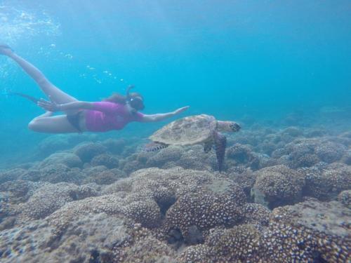 diving-snorkeling4-1024x768