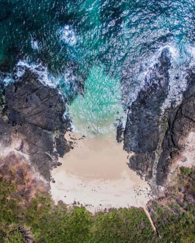 isla-iguana4-819x1024